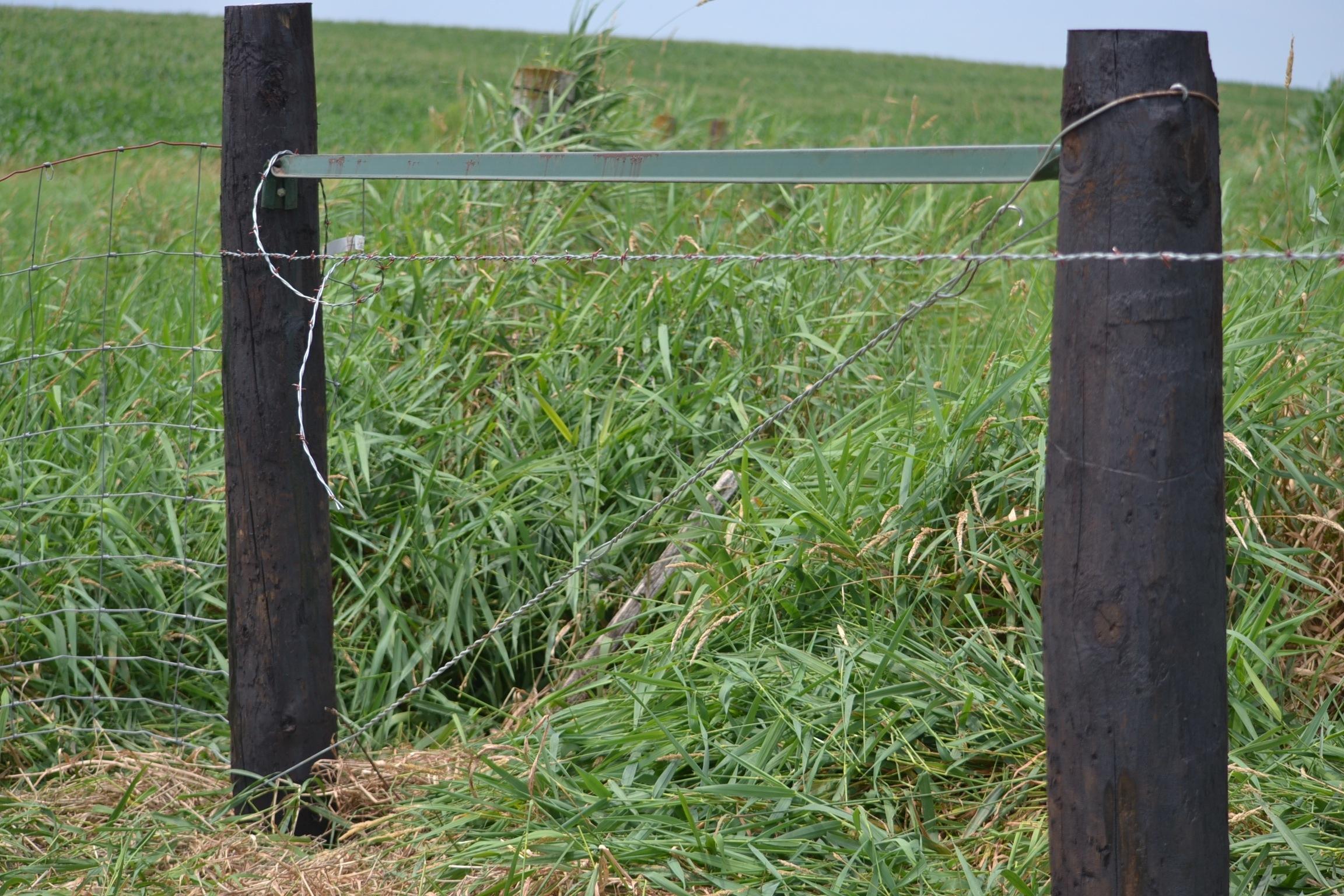 Fence | Eden Hills