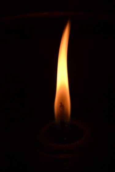 Двое воинов погибли в День Независимости Украины, девять - ранены, - спикер АТО - Цензор.НЕТ 7406