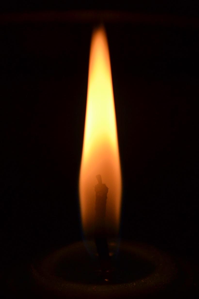 Двое воинов погибли в День Независимости Украины, девять - ранены, - спикер АТО - Цензор.НЕТ 6587