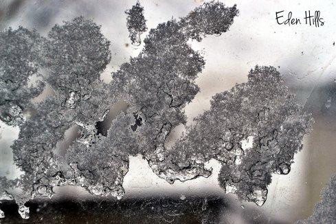 ice and snow on window