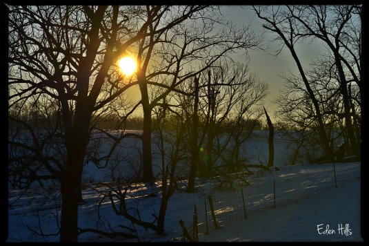 winter afternoon sun