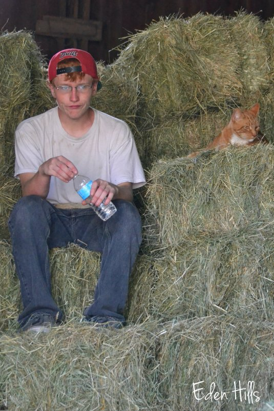 boy and cat in hay
