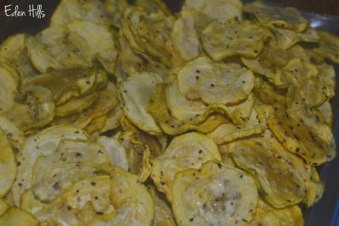 lemon pepper zucchini chips