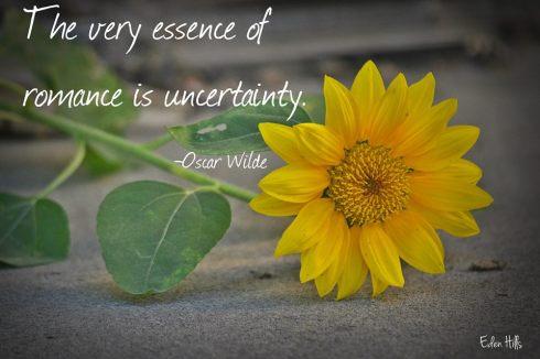 Romance Uncertainty