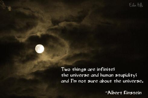 Universe and Stupidity