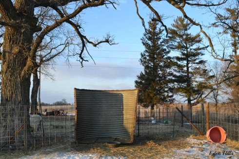 quonset hut blown over