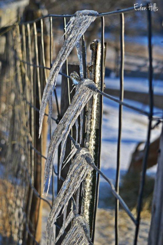 angled icicles