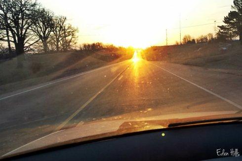 sunny morning drive