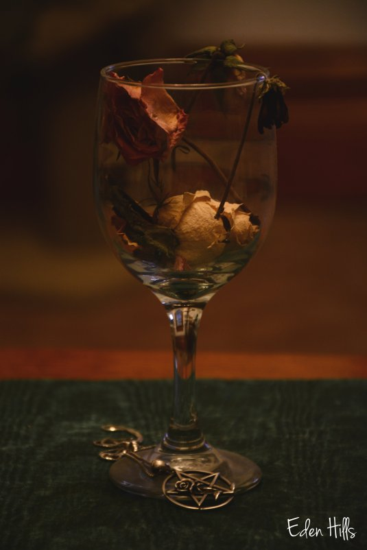 old flower, wine glass, and necklace