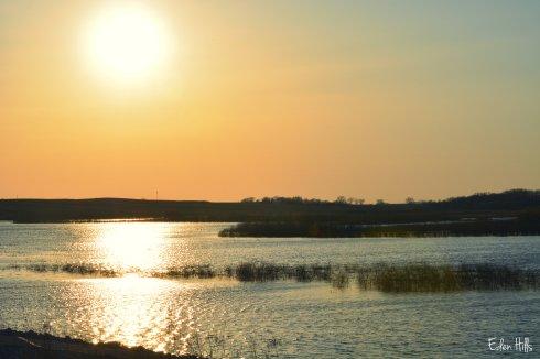 Hendrickson's Marsh