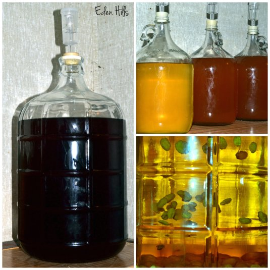 carboys of wine
