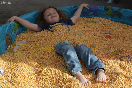 kid in corn pool
