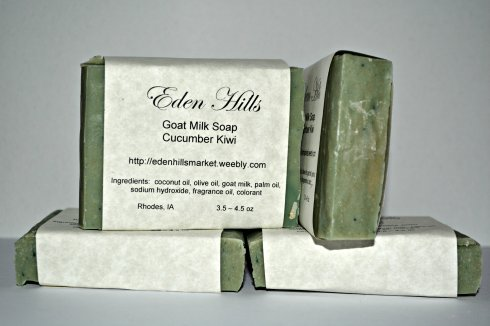 cucumber kiwi goat's milk soap
