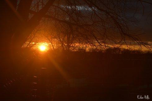 Sunset 048w