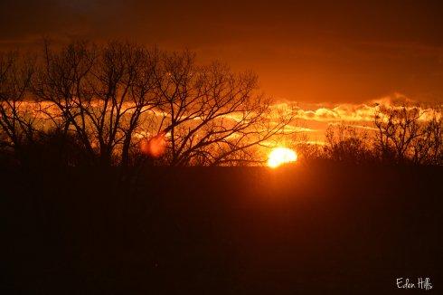 Sunset 060w