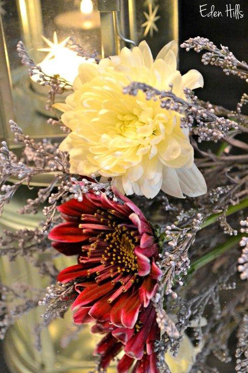 Flowers 063ew