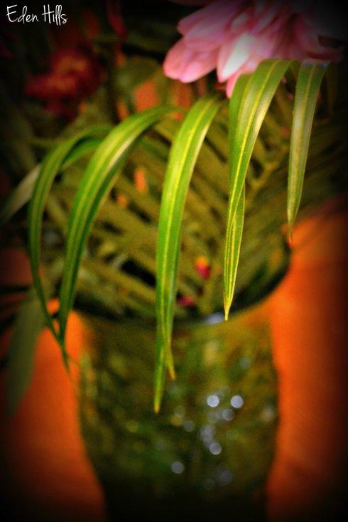 Leaves 065ew