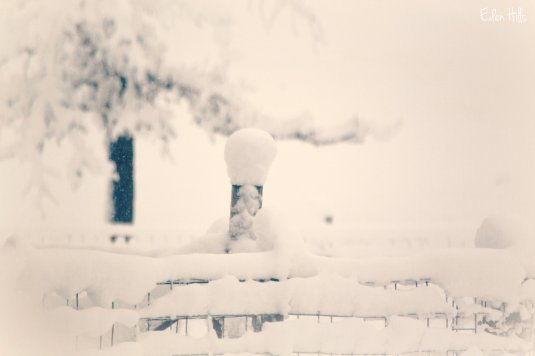 Snow-covered Fence Post