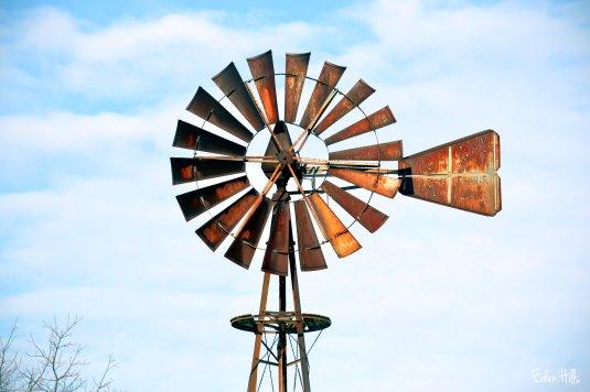 Windmill 0104e