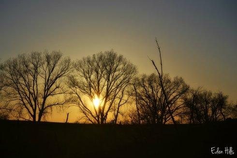 Sunset_0344ew