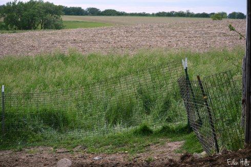 panel fence_0638ew