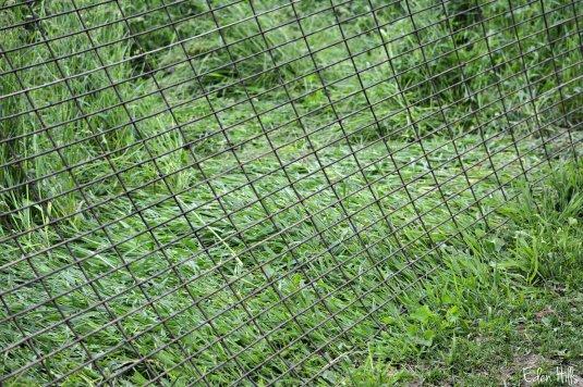 panel fence_0639ew