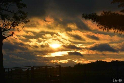 sunset_9974aw