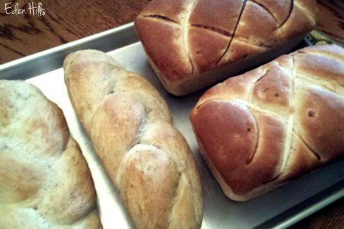 country herb twist and onion breads