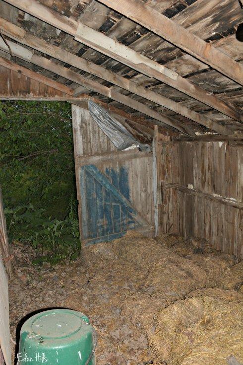 Garage_0841ew