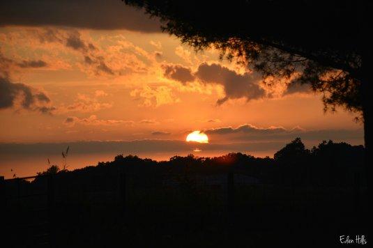 sunset_2046ew