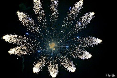 Fireworks_4400ew