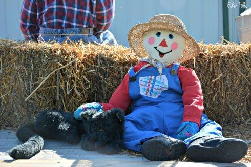 Scarecrow_4495ew