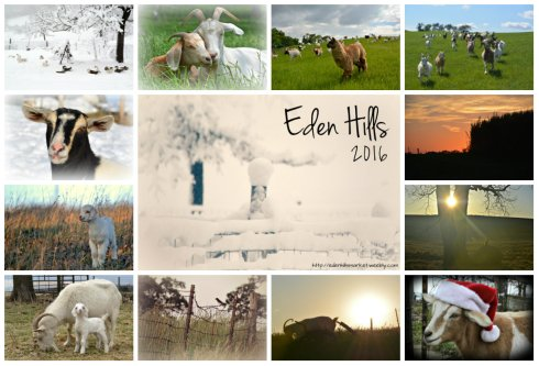 calendar collage