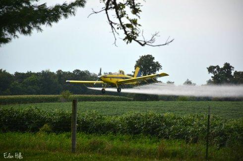 Crop Duster_5412ew