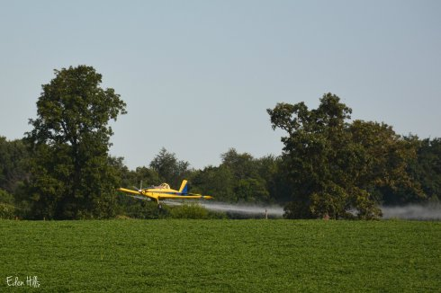 Cropduster_4750aw