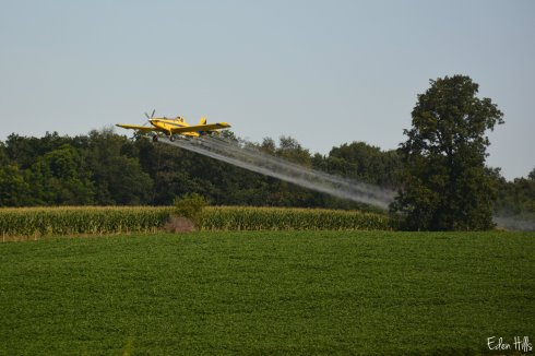 Cropduster_4751aw