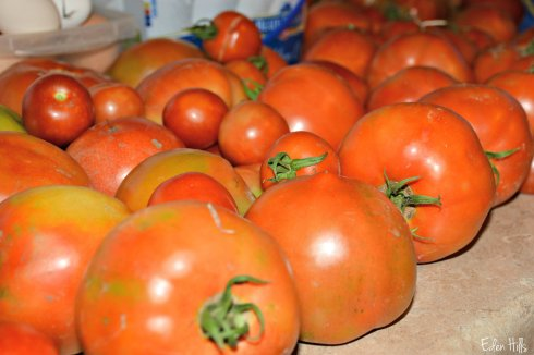 tomatoes_5299ew