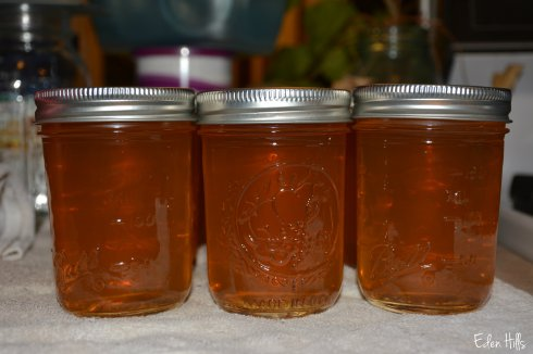 apple jelly_6270w