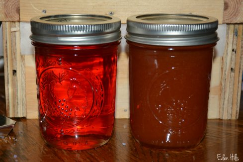 jelly and jam_6425aw