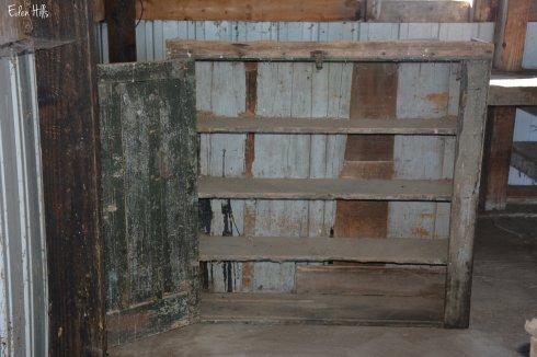Shelves_6276w