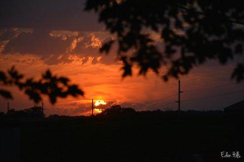 Sunset_6150w