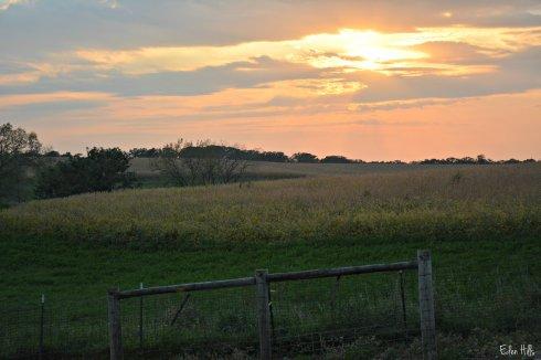 Sunset_6603ew