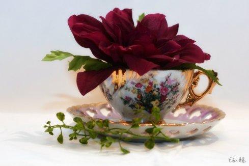 Flower Cup_9559ew