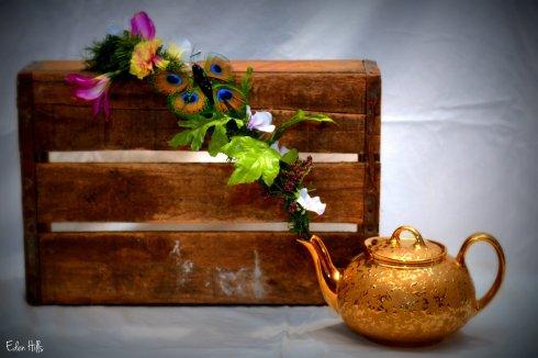 Flower Pot_9568ew