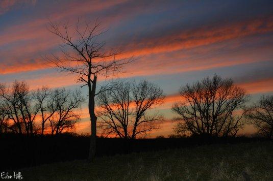 Sunset_8519ew