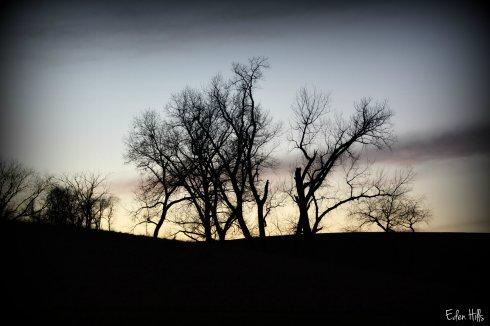sunset_8545ew