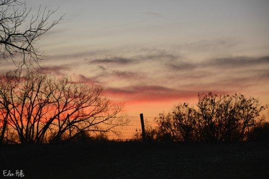 sunset_8581ew