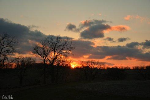 sunset_8641ew