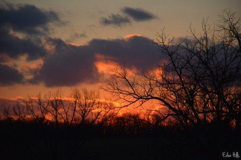sunset_8646w