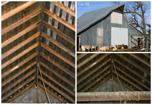 barn collage ws